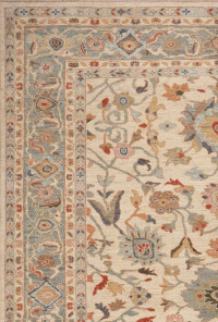 #41910 Sultanabad Persian Rug