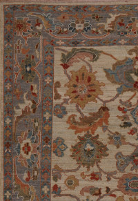 #42119-1  Sultanabad Persian Rug